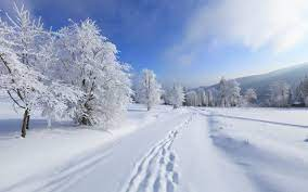 Snow Laptop Wallpapers - Top Free Snow ...