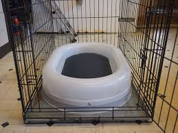 our new smaller chew proof bed fitting in a cage