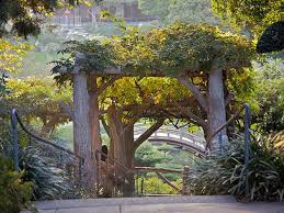japanese botanical gardens huntington library