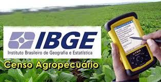 Resultado de imagem para Censo Agropecuário
