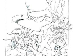 Ocean Coloring Page Ocean Coloring Pages Preschool Beach Animals