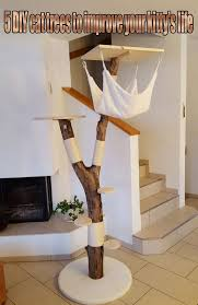 5 diy cat trees to improve your kitty s life