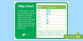 Tally Chart Display Poster Nz Statistics Back To School