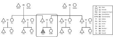 Kinship Chart Maker Blank Kinship Chart Basic Electrical Wiring Theory