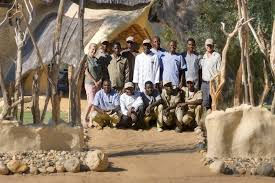 What Is A Typical Day On Safari Like Sandgrouse Travel