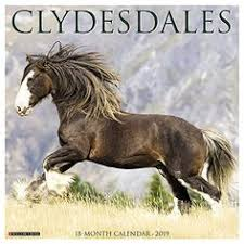 dog calendar 2019 calendar clydesdale horses horse gifts draft horses international holidays willow creek large format moon phases
