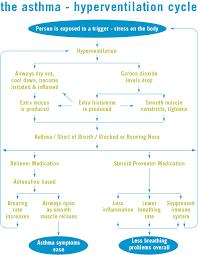 Asthma Management Flow Chart Asthma Allergies Buteyko Works