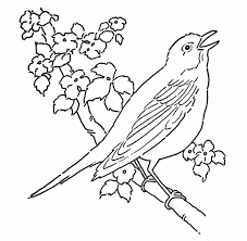 Small Picture Animals Coloring Pages Animal Coloring Pages For Toddlers Kids