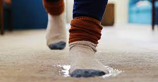 how to dry carpet after a flood mr