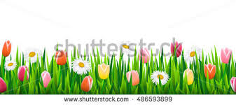 grass and flowers border. Perfect Flowers Seamless Border With Grass And Flowers Vector Illustration And Grass Flowers Border M