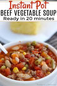 instant pot beef vegetable soup recipe
