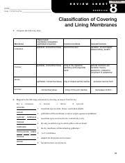 Classification Of Covering And Lining Membranes Complete The Following Chart Su_bio1012_w3_a2_ex8_gomez_m 8 Print Form R E V I E W Name