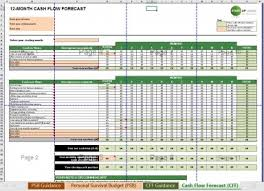 Budget Excel Cash Flow Forecast Supplementary Personal Survival Budget Excel Template