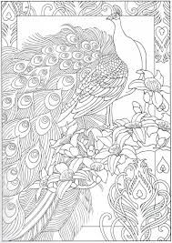 New Peacock Coloring Page 29 31 Free Coloring Book