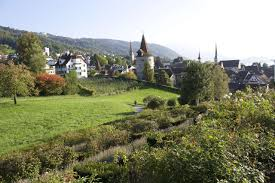 Image result for zug switzerland people living
