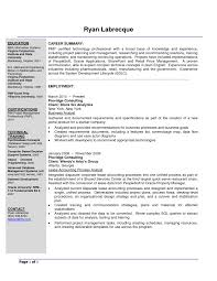 It Consultant Resume Example Pre Sales Sample Business Security