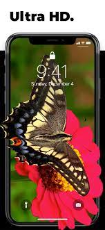 Live wallpaper iphone