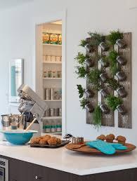 Herb Garden For Kitchen Kitchen Wall Herb Garden 5 Indoor Herb Garden Ideas Decorating And