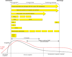 24 Hour Fluid Balance Chart Example Comprehensive In Hospital Monitoring In Acute Heart Failure