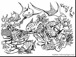 Small Picture fabulous realistic ocean animals coloring pages with under the sea
