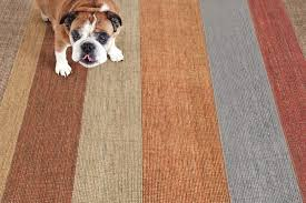 awesome striped area rugs 810 roselawnlutheran within striped area rugs popular