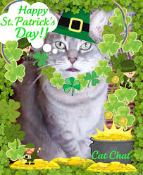 Image result for happy st patrick's day animals