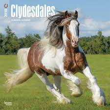 clydesdales 2018 wall calendar calendars books gifts