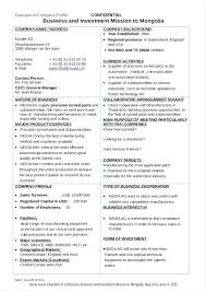 Company Profile Sample Download Mesmerizing Industry Profile Template Photos Free Security Company Profile