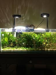 Kessil Aquarium Light Kessil A360x With Spectral X Review Underwater Creatures