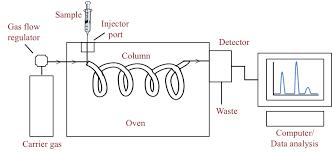 Carrying You Through Gas Chromatography Bitesize Bio
