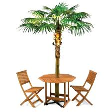 lighted palm trees for patio the lighted palm tree umbrella outside trees medium size lighted palm lighted palm trees for patio
