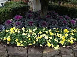Small Picture Stunning Idea Perennial Flower Garden Modest Design Perennial