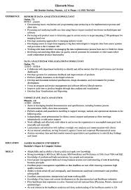 Tableau Resume Consultant Lead Resume Sample Tableaur Resumes Entry Level Report 9