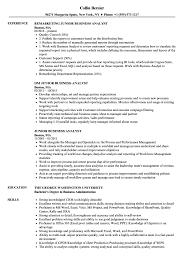 Business Analyst Sample Resume Junior Business Analyst Resume Samples Velvet Jobs 32