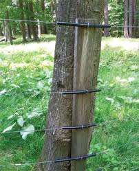 The living fence post Living the Country Life