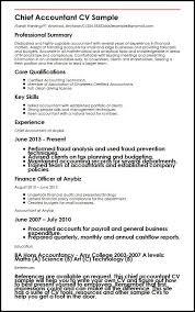 Chief Accountant Cv Sample Myperfectcv
