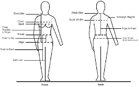 Measurement Chart Body The Standard Body Measurements Chart Download Scientific