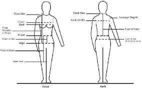 The Standard Body Measurements Chart Download Scientific