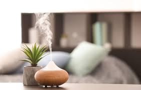 Luftfeuchtigkeit In Räumen Regulieren Tipps Für Die Optimale