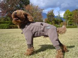 Finlands Dog Brand Fleece Overalls For Large Dogs
