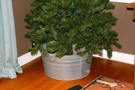 Large Christmas Tree Stand How To Get A 5 Christmas Tree And How To Take Care Of It