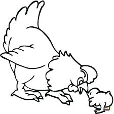 gallina para colorear para y para s para con para gallina con pollitos para colorear y