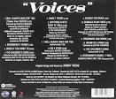 Voices [Original Soundtrack]