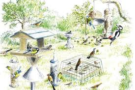House And Garden 8 Week Feed Chart How To Attract Birds To Your Garden Discover Wildlife