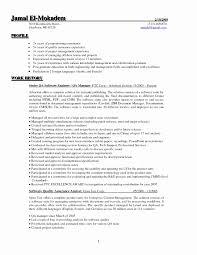 Sample Program Analyst Resume Luxury Software Testing Resume Samples