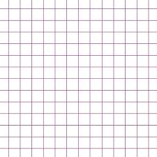 Spiral Bound Graph Paper Rome Fontanacountryinn Com