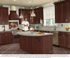 Kitchen Remodel Examples Marvellous Kitchen Remodel Examples And Costs Accordingly Unique