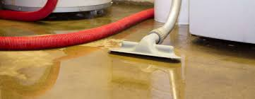So You Need Flood Cleaning Services
