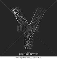 Vector Letter Y Vector Photo Free Trial Bigstock