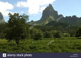 Tropischen Regenwald Moorea Tahiti Französisch Polynesien